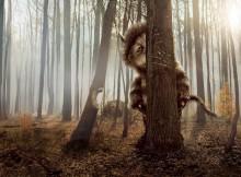 snargash behind tree